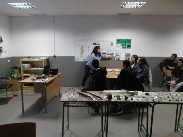 """Instituto de Secundaria """"Blas de Prado"""" de Camarena"""