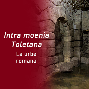 Visita Toletum romano (Cota 667) copia